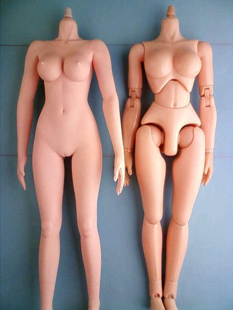 seamless_body_comparison_a.jpg