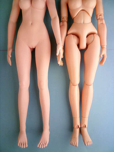 seamless_body_comparison_c.jpg