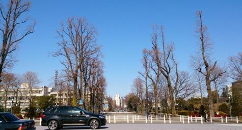 DSC_1417-6-2.jpg