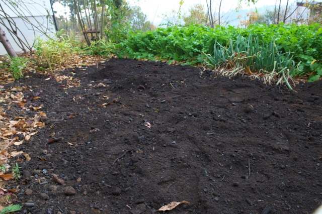 頂いた雑木の灰と炭の混じった土-2