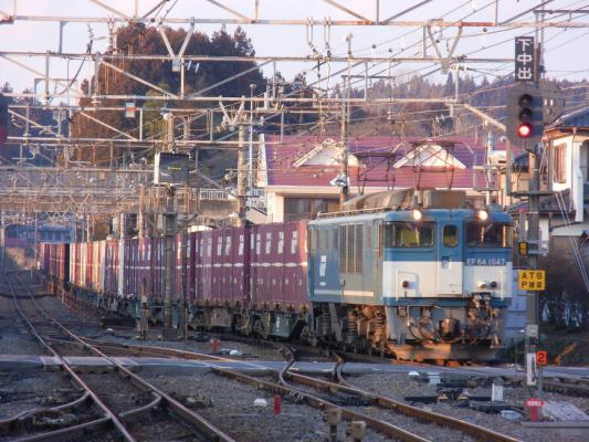 DSCN4247.jpg