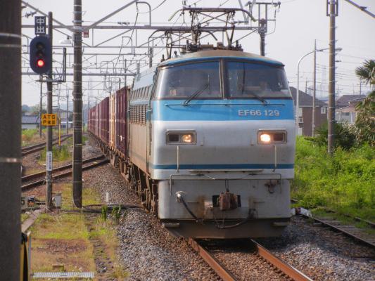 DSCN5081.jpg