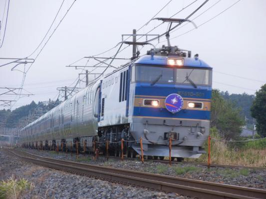 DSCN5272.jpg