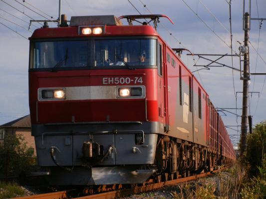 DSCN6909.jpg