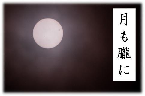 月も朧に 表紙