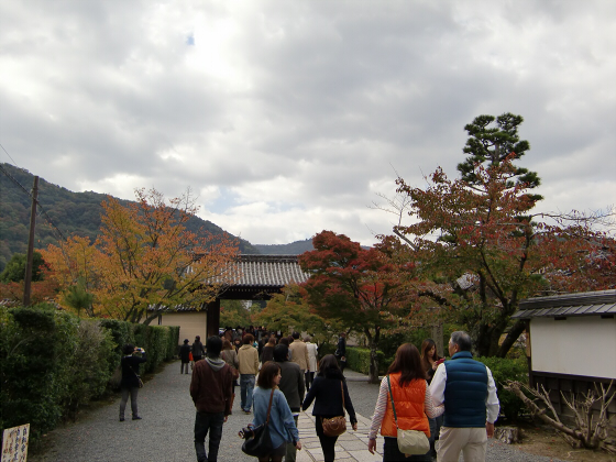 嵐山の紅葉2012秋14