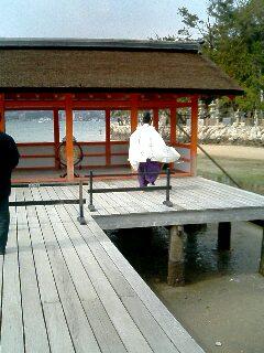 台風後厳島神社03