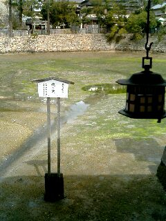 台風後厳島神社06
