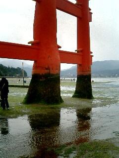台風後厳島神社10