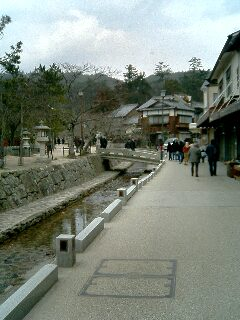 台風後厳島神社12