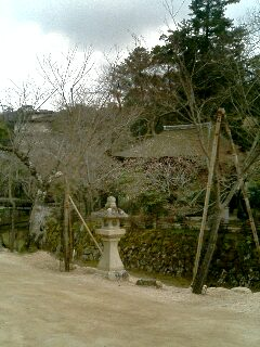 台風後厳島神社13