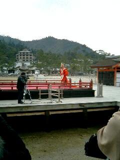 台風後厳島神社15
