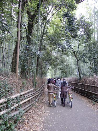 嵯峨野近辺景観02