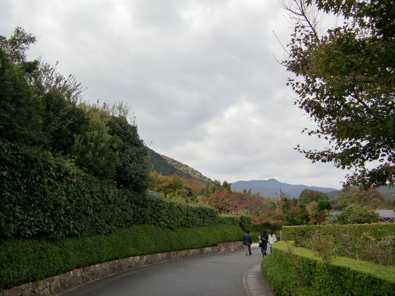 嵯峨野近辺景観08
