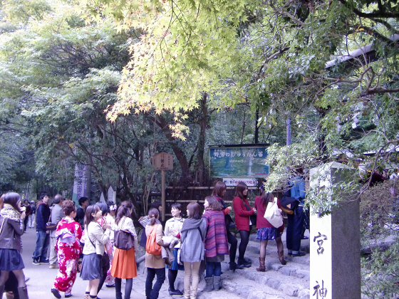 嵯峨野近辺景観20