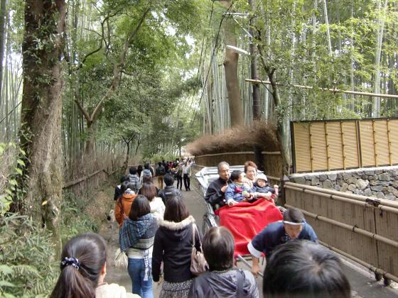 嵯峨野近辺景観22