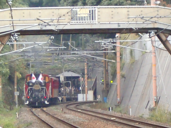 嵯峨野トロッコ列車10