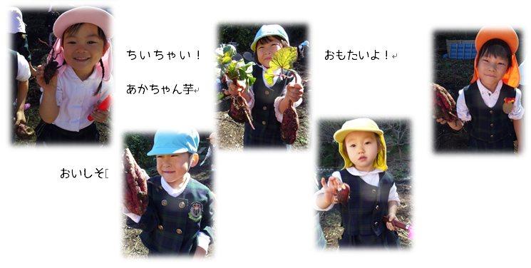 3_2014110617451446a.jpg