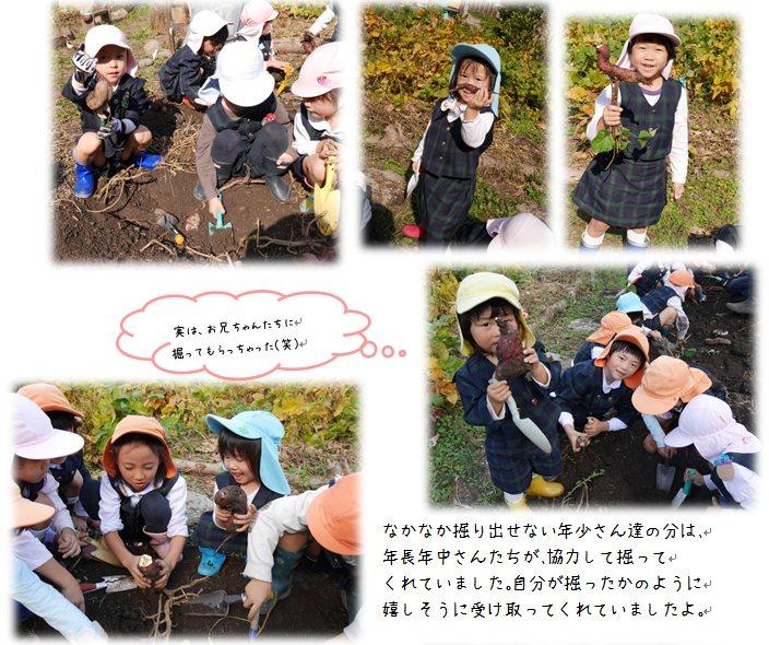 4_20141113104314800.jpg