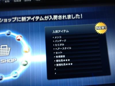 fc2blog_20121215180246277.jpg
