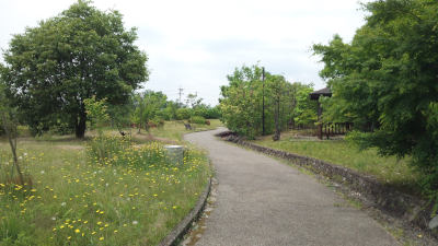 azutimomoyama11.jpg
