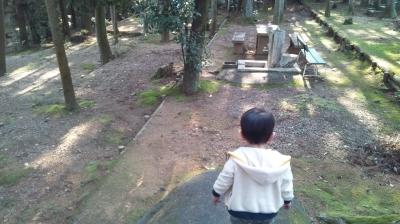 soharashizen03.jpg