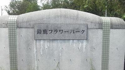 suzukaflower01.jpg