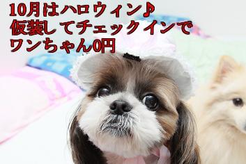 18zFj_20130902110637e14.jpg