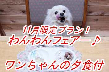 wanwanf_20130902110639a0c.jpg
