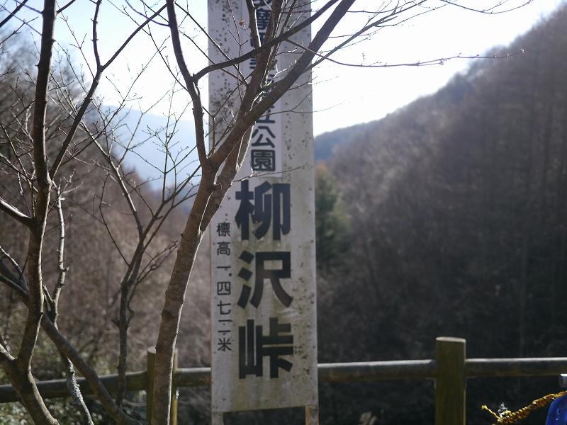 P1110939.jpg