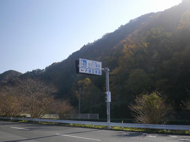 P1120239.jpg