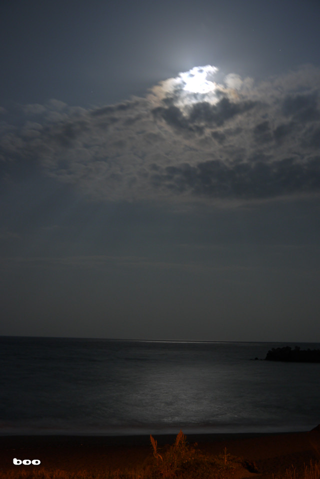 太平洋を照らす月光