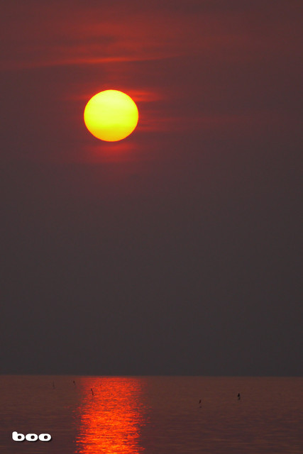 瀬戸内の海におちる夕日