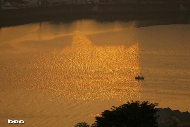 GOLDに染まる鏡川