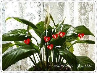 035_20120501114638.jpg