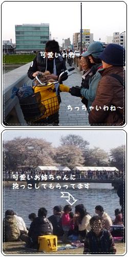 cats_20120411120145.jpg