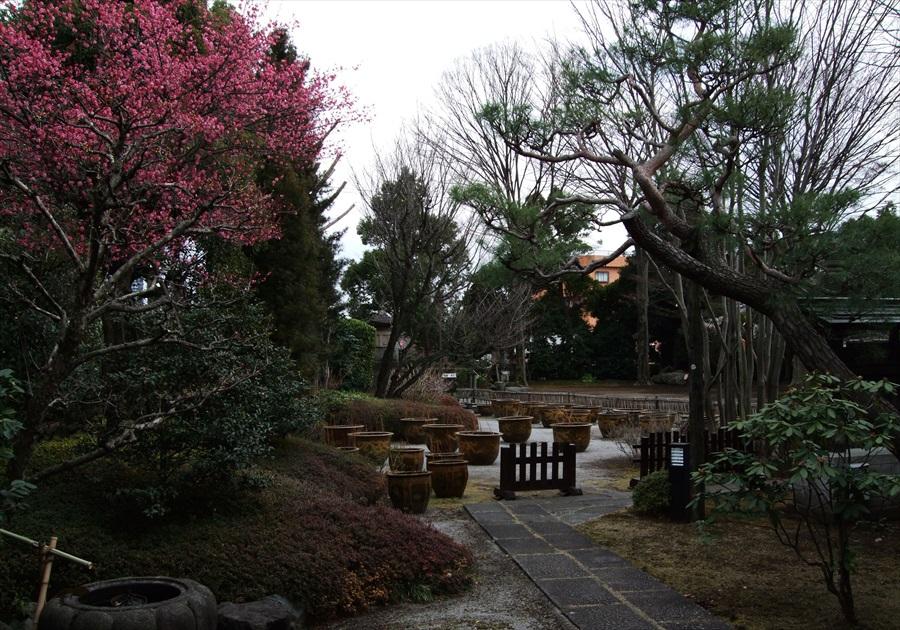 20130309-fukei-006.jpg