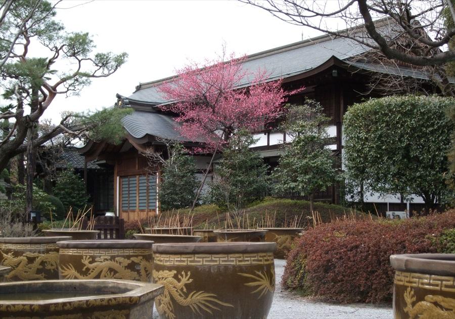 20130309-fukei-008.jpg