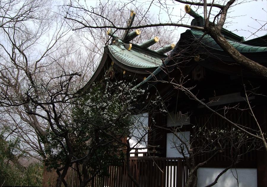 20130315-fukei-008.jpg