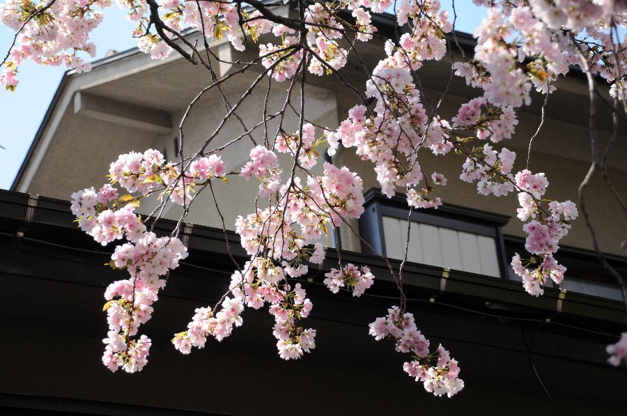 20130417-mizuabi-001.jpg