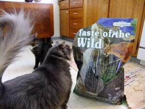 cat+food_convert_20130413134007.jpg