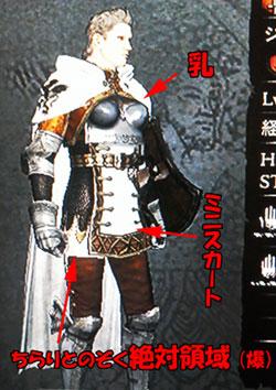 女隊長の鎧、装着全身図