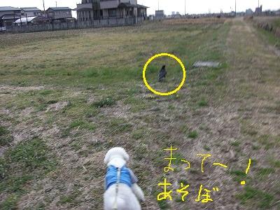 141_20120311215455.jpg
