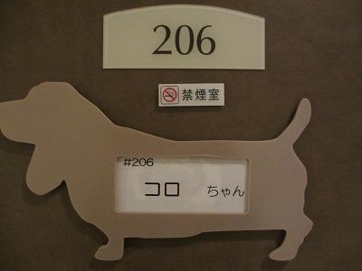 236_20120428230037.jpg