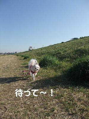 2013_03122013-3-120029.jpg