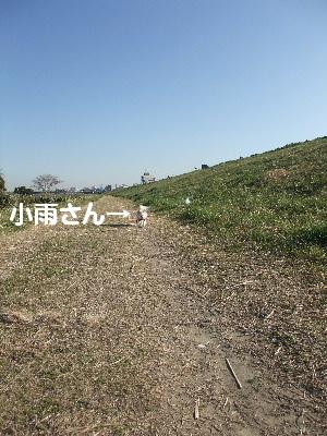 2013_03122013-3-120032.jpg