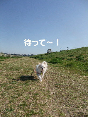 2013_03222013-3-220026.jpg