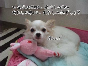 zQ6ArXObuGvlWaR1380694156_1380694241.jpg