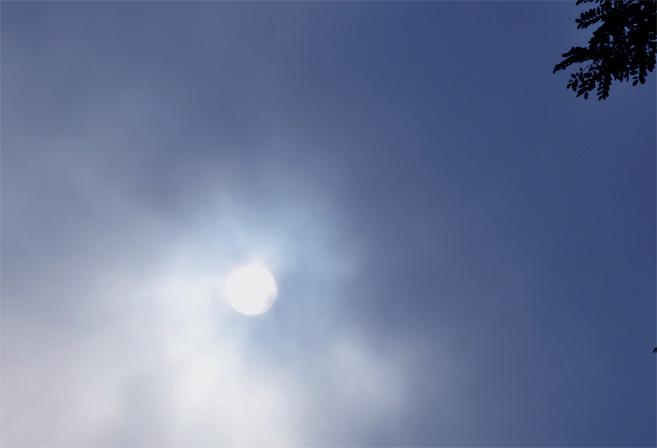30728-10.jpg