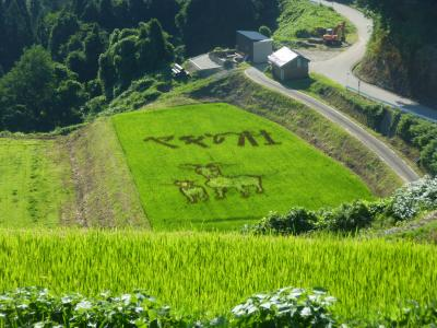 稲作アート